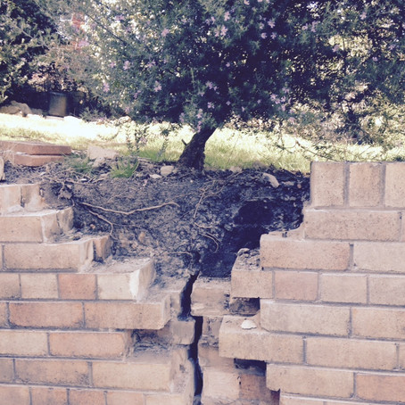 Retaining Wall Saved From Knockdown And Rebuild In Gosford
