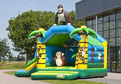 Multifun-Jungle-nw-1-940x652.jpg
