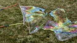 reuzezeepbellen
