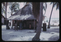 Rongerik, House, 2-3-1948, Photo by Leonard Mason, Robert C. Kiste Collection, UHawaii, Manoa