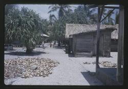 Kili, 8-27-1963 - Photo by Robert Kiste, Source -Robert C Kiste Collection, UHawaii, Manoa