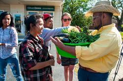 Distributing veggies