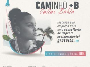 Sistema B e Comunidade B Bahia oferecem consultoria de impacto socioambiental online e grat