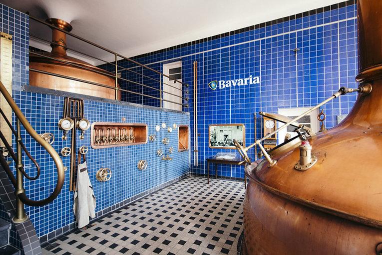 Roya Swinkels Family Brewers