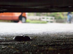 Étude de cas: Les Mureaux,le stationnement intelligent comme ligne de conduite