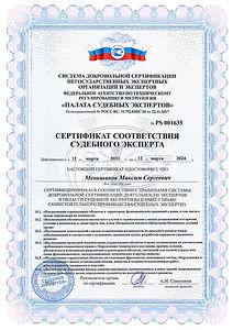 Менишиков ССЭ (4).jpg