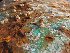 Biofouling: Not A Load of Barnacles
