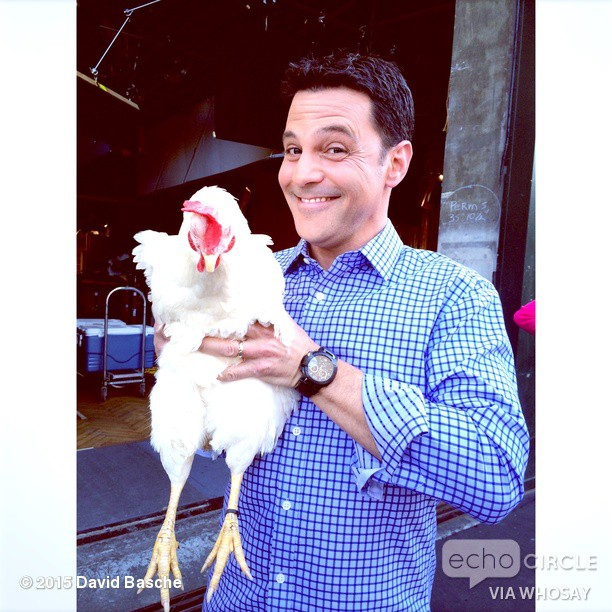 __alispagnola_ _DavidABasche Haha maybe_ OK, I'LL SEE YOUR MAYBE AND RAISE YOU A CHICKEN _the_exes #