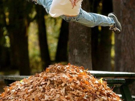 5 choses à absolument faire découvrir à vos enfants en automne