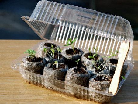 Recyclage au jardin : 5 outils à fabriquer soi-même