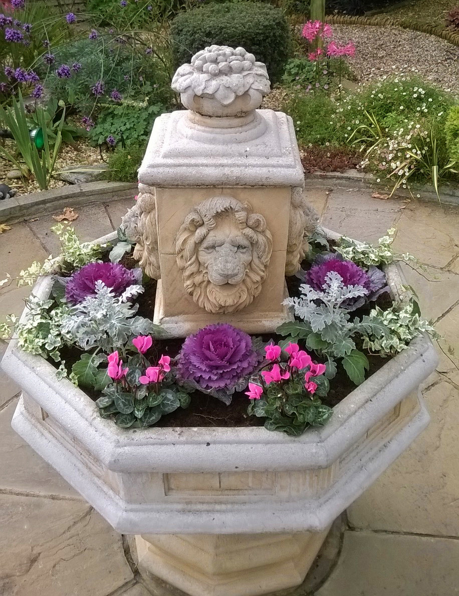 fountain planter, cyclamen, ornamental cabbage, pink planting scheme, London garden designer, barnet planting design,