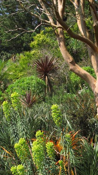 Great Gardens To Visit: Coleton Fishacre, A Mediterranean Paradise in Devon
