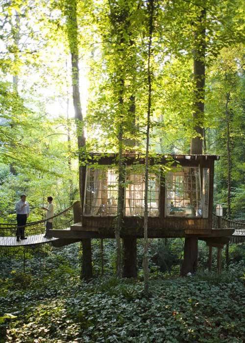 treehouse, cabin, romantic, windows, antique,
