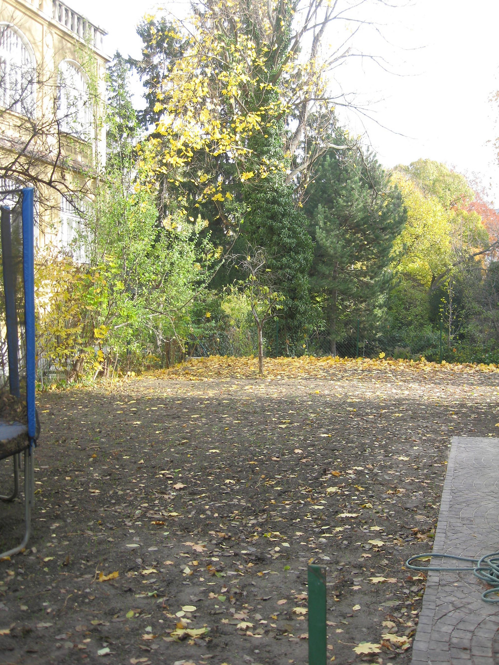 empty garden 1.jpg