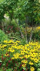 Garden Designer's own Garden