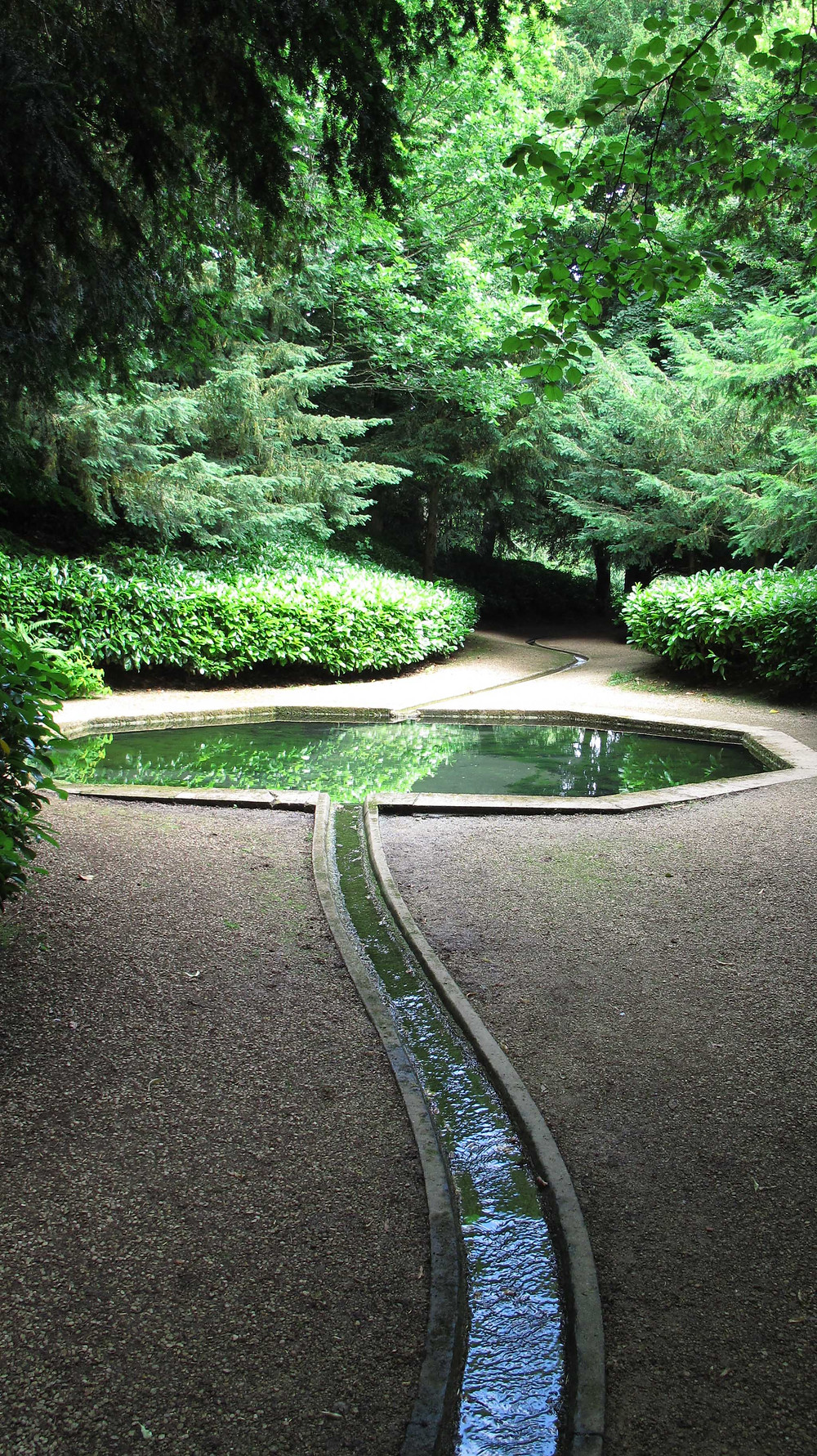 swimming pool, rill,water feature, woodland path,