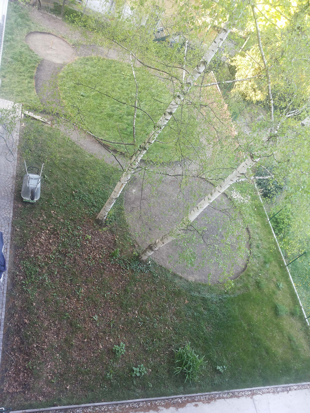 b4 planting from above.jpg