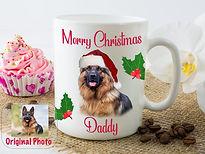 Shep Christmas 1.jpg