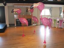 Flamingo Airwalkers