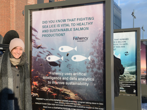 Fishency accepted into the Katapult Ocean Accelerator