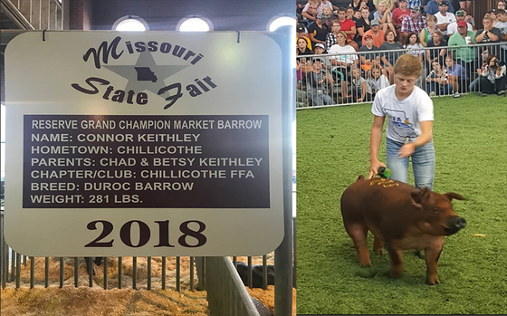 2018 Missouri State Fair Sale of Champions. Featuring Connor Keithley and his Reserve Champion Marke