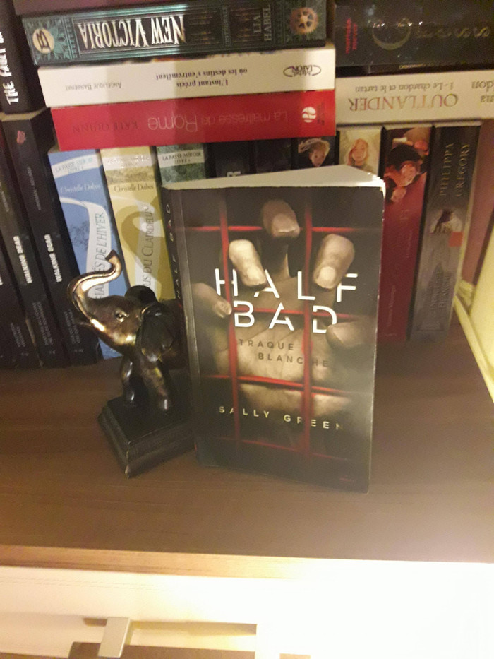 [Chronique littéraire] Half bad : Traque Blanche (tome 1)
