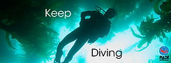 FB_TL_cov_keepdiving_01_fin.jpg