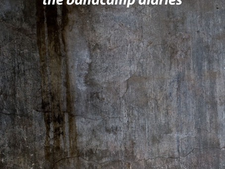 NEW REVIEW OF POLICY OF TRUTH IN THE BANDCAMP DIARIES