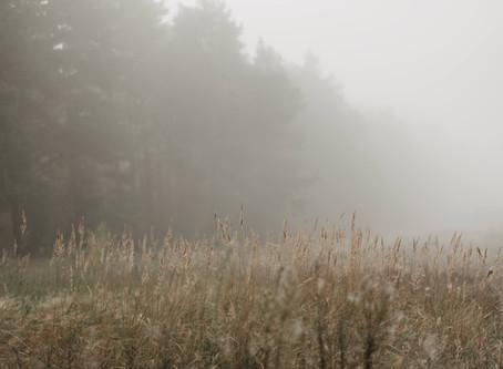 4 Breathing Tools for Finding Stillness