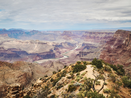 Lessons From the Grand Canyon