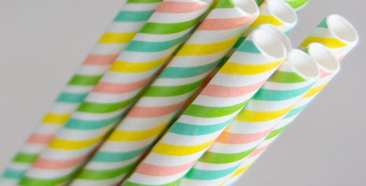 Rainbow Paper Eco Straws