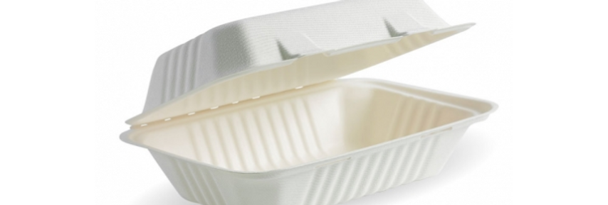 White Rectangle Biocance Clamshell Takeaway Container