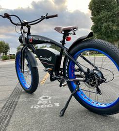 davient-e-bike-15jpg
