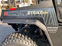 2021 Hisun Strike 250 (Black Ops)