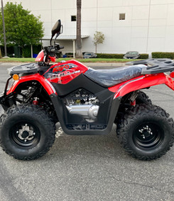 2020 Kayo Bull 200 (Red) (20).JPG
