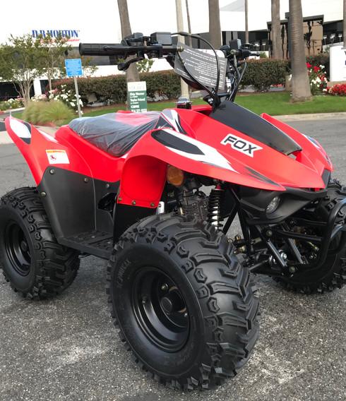 2020-kayo-fox-70-red-5jpg