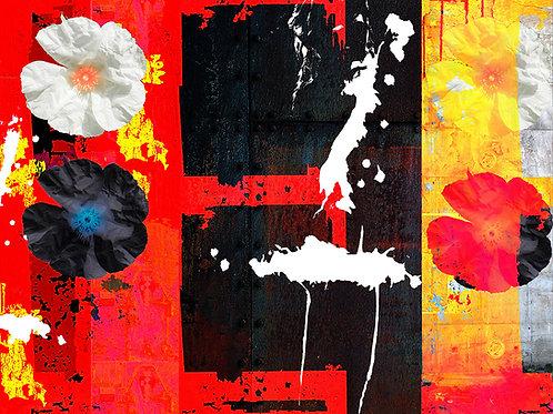 Jim D., Fleur de pierre VI