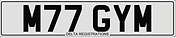 M77 GYM - Delta - white .PNG