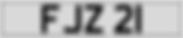 FJZ 21 WHITE.PNG