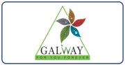 Galway #logo