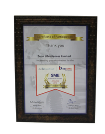 Certificate of ParticipatioN 2018, SME Business Excellence Awards
