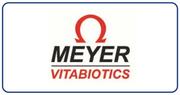 Meyer  #logo.png