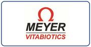 Meyer  #logo