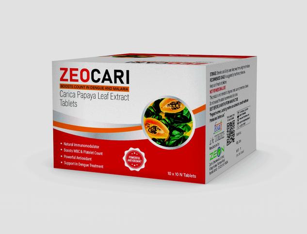 Zeo-Cari-Mockup.png