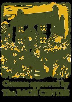 logo cursos app.png