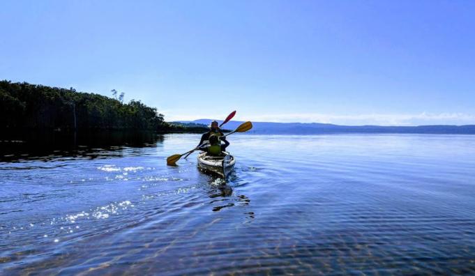 Sunshine Coast Airbnb Experiences
