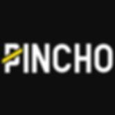 2450_Pincho-logo-black-400x400.png