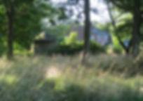 garden and guinness 06 08 15 056.JPG
