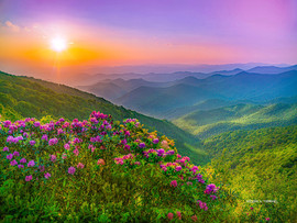 Appalachian - Paradise 1.jpg