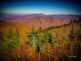 AutumnHaywoodCounty.jpg